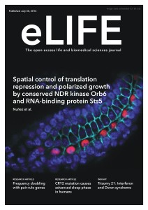 elife_coverposter